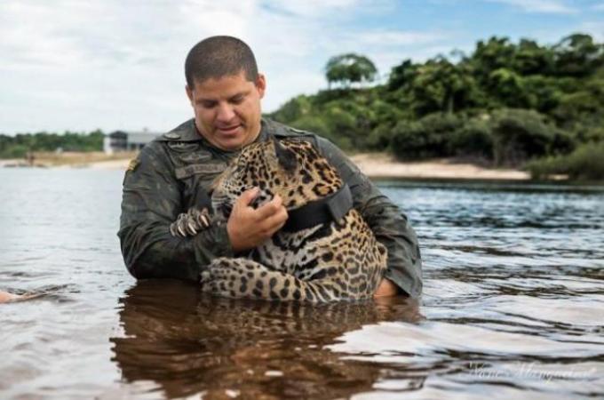 助けてくれた人間に対して感謝をする動物たち10選。