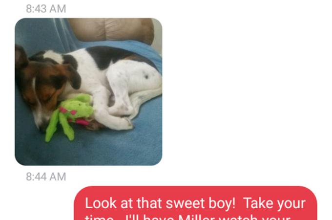 真面目に勤めてきた部下が、愛犬の寝顔の写真を撮っていて遅刻し、その時の上司の対応が素敵すぎると話題に。