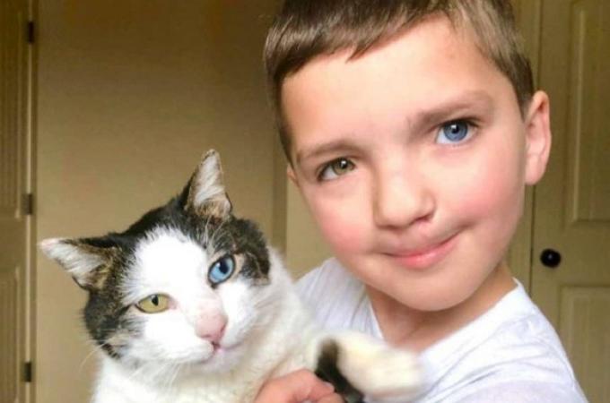虹彩異色症・口唇口蓋裂と同じ症状の猫と少年が出会い、大親友となる。