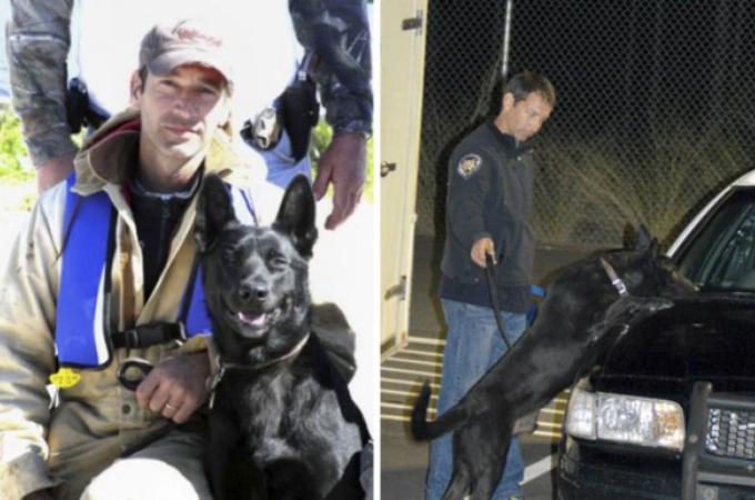 武装したギャングに襲われた警察官。死をも覚悟した瞬間に相棒である警察犬が現れる。